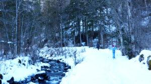 Chalet le GrillPremenade à ski de fond dans le bois de l'Alleau
